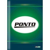 Livro Ponto 215x315mm com 50 Folhas São Domingos